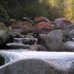 torrente Forzo autunno 2006